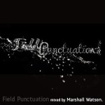 Field Punctuation Mixed By Marshall Watson