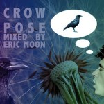 Crow Pose Mixed By Eric Moon